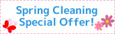 HouseCleaning Spring Cleaning Special Offer!